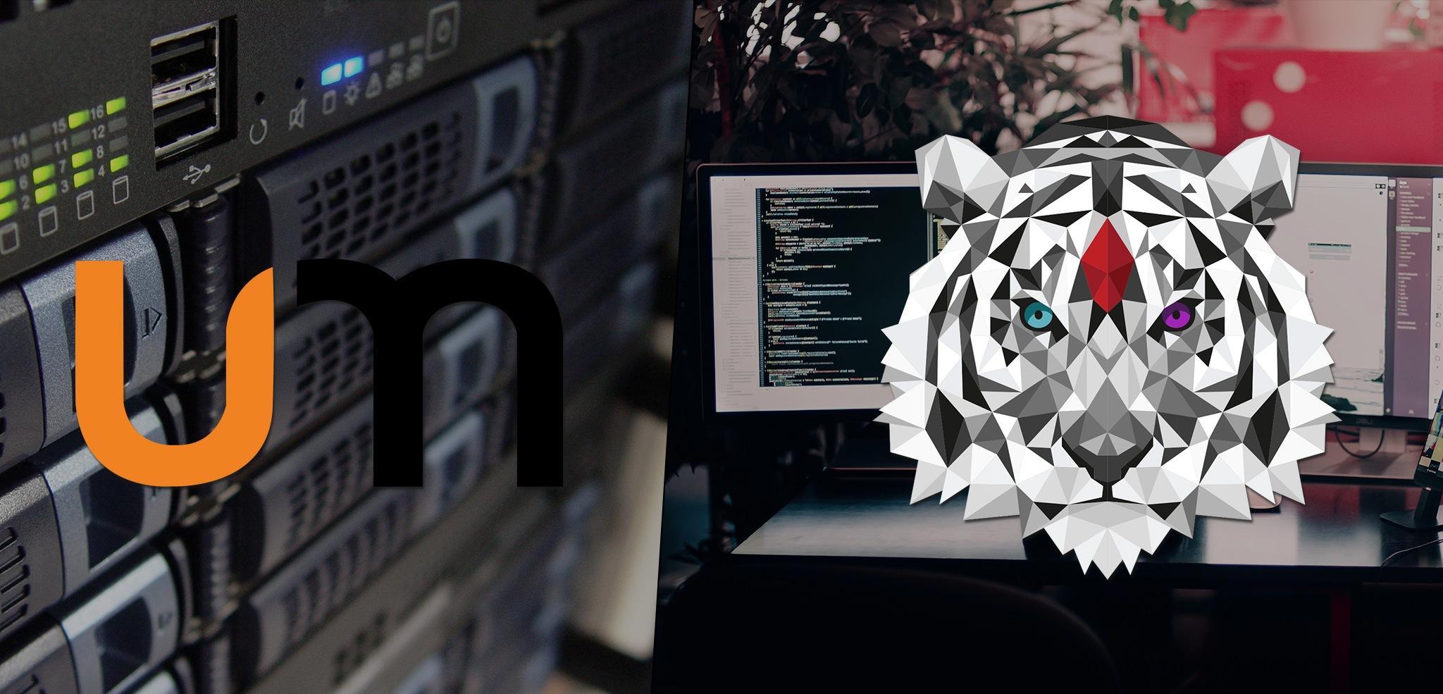 zyger-umanix-about-banner-hosting-design  Umanix Zyger Umanix about banner hosting design